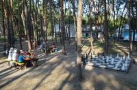 Выездной чемпионат шахматно-шашечного клуба «Дебют»